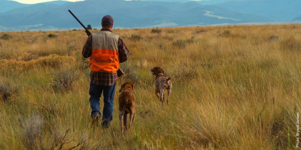 hunting1